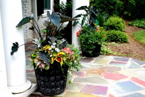 Maryland home summer planter