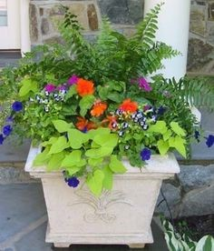 Maryland Summer Planter